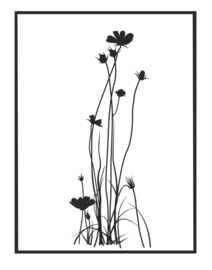 Muursticker Boterbloemen met kader