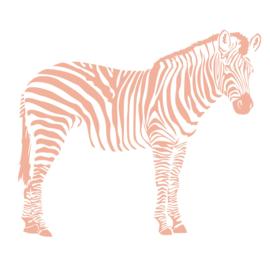 Zebra zijkant
