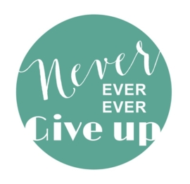 Muursticker  Button Never give Up