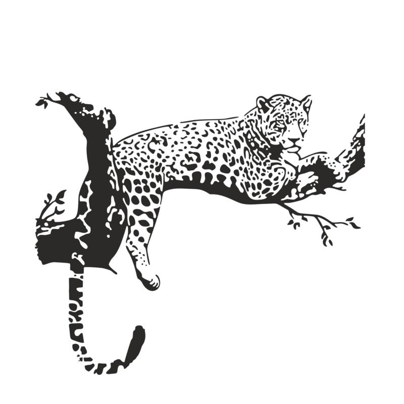 Muursticker Cheetah