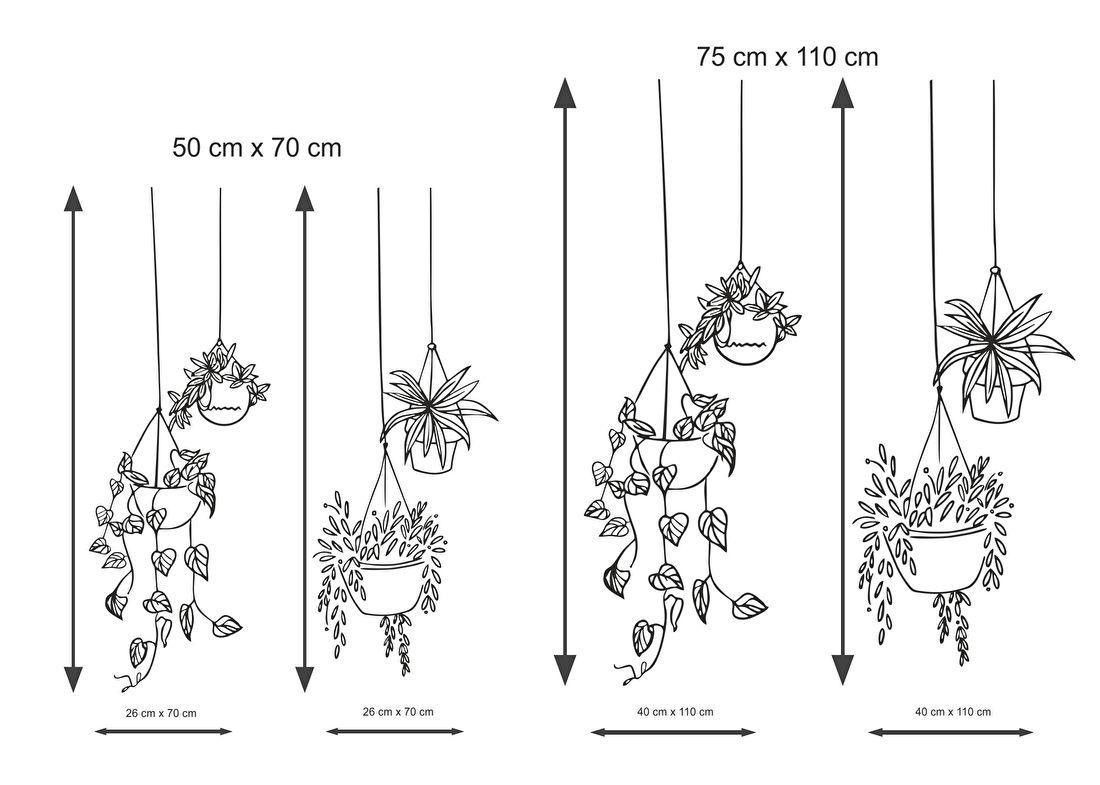 Maat hangende plant