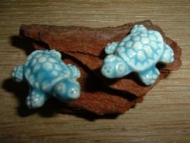 Mooie lichtaquablauwe keramieke kralen in de vorm van een schildpad
