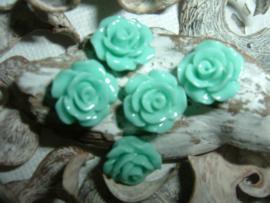 Mooie glanzende turquoise roosjes