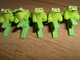 10 leuke groene knijpertjes met een kikkertje