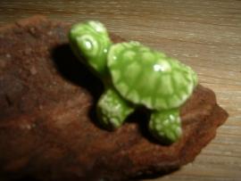 Mooie limegroene keramieke kralen in de vorm van een schildpad