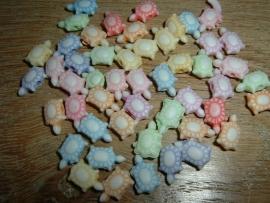 Mooie pastelkleurige mix van kleine schildpadjes