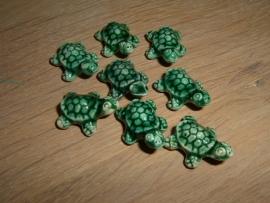 Mooie donkergroene keramieke schildpadjes
