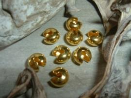 Mooie goudkleurige knijpkraalverbergers