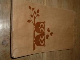 Leuke craft cadeauzakjes met uiltjes