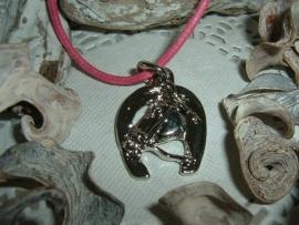 Mooi kettinkje met zilverkleurig hangertje van een hoefijzer met paardenhoofd
