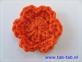 BloemB3,5 B6 oranje