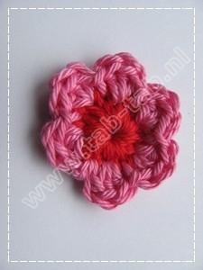 Bloem3 B6 Rood-Roze