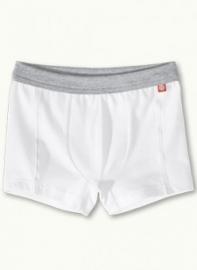 Witte boxer met grijze rand