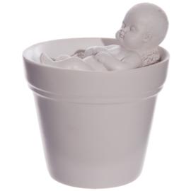 Baby in bloempot
