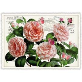 Een echte postkaart met bloemen