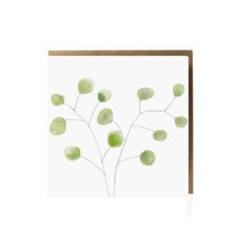 Grafiquelien - Eucalyptus