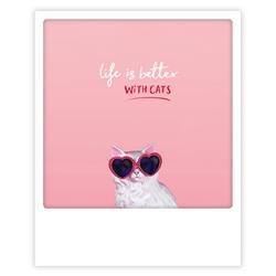 Met een kat is het leven beter kaart