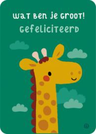 Net zo groot als een giraf ?