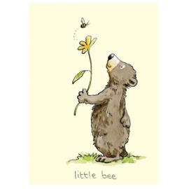 Little bee - Anita Jeram