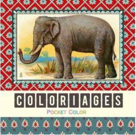 Dieren kleurboek