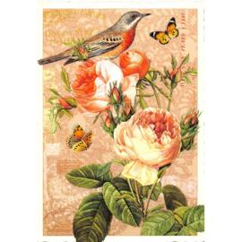 Mooie vogel, vlinder en rozenkaart