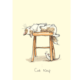 Cat nap - Anita Jeram