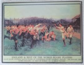 metalen wandplaat rugby 30-40 cm