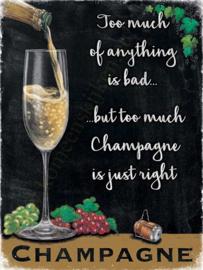 metalen wandplaat champagne 30x40 cm