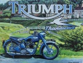 metalen wandplaat triumph thunderbird 30-40 cm