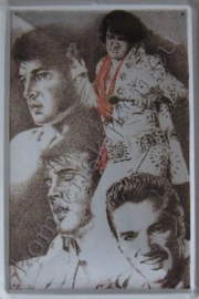 metalen wandbord Elvis Presley collage 20x30 cm