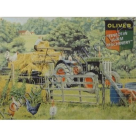 wandplaat oliver 30-40 cm