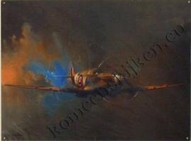metalen wandbord fighterplane 30-40 cm