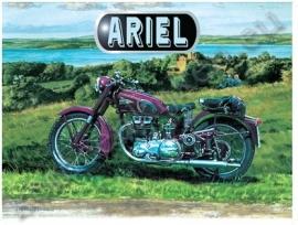 blikken wandplaat Ariel 30x40 cm