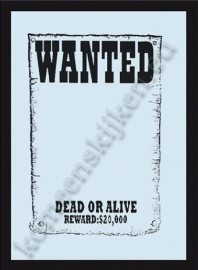 magneet spiegel wanted, dead or alive
