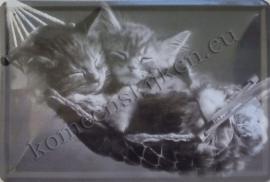 metalen wandbord slapende kittens 20-30 cm