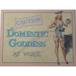 metalen wandbord domestic goddess 30-40 cm