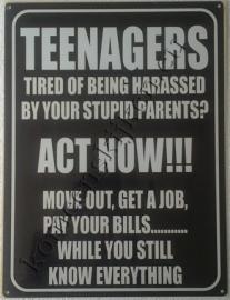 metalen wandbord teenagers, act now! 30-40 cm
