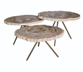 New Khine Petrified wood coffee table brass SV3