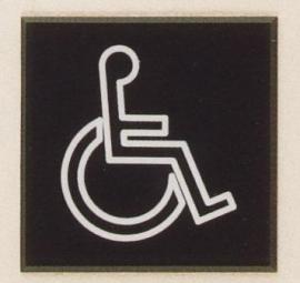 Gravoglas pictogram art nr. 4806
