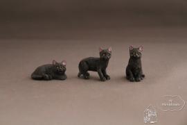 Kleine kat zwart