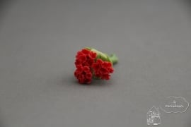 Geranium rood
