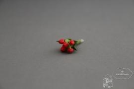 Bosje tulpen rood