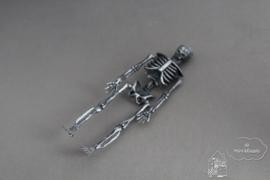Skelet zwart/zilver