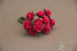 Fuchsia roosjes