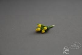Bosje tulpen geel