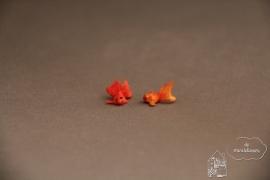 Sluierstaartvis