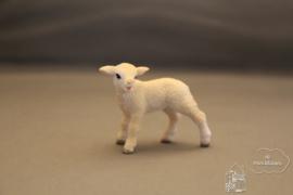 Lammetje staand