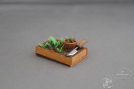 Planten verpoten