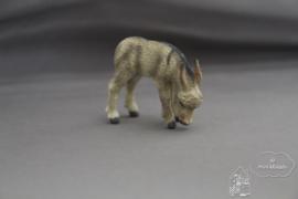 Grazende ezel