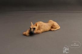 Deense Dog liggend